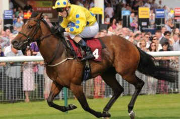 Horse Racing Sport and Its Types