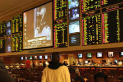 Gamble With LV Bet As A Bookmaker